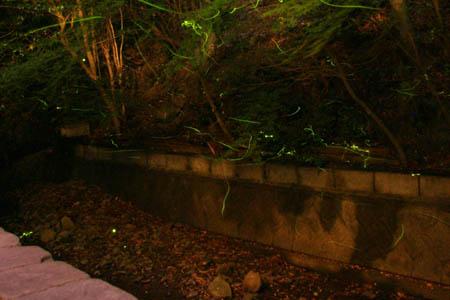 二の丸温泉
