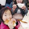 食祭WAKAYAMA