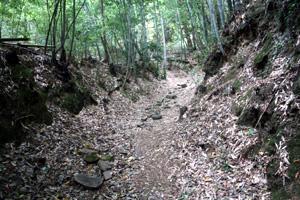 追加指定された熊野参詣道大辺路富田坂の道