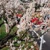 県植物公園緑花センター