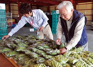 朝採りの野菜が次々と運び込まれた