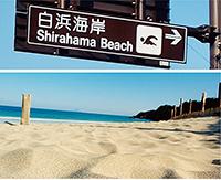 「白浜海岸」の標識と「白浜大浜海水浴場」(下田市)