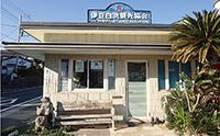 南国を思わせる伊豆白浜観光協会(下田市)