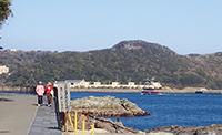 「和歌の浦遊歩道」と、「黒船」を模した遊覧船(下田市)