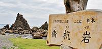 吉野熊野国立公園に指定されている「橋杭岩」(串本町)