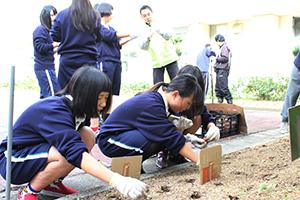 球根を植える生徒たち