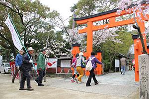 桜が咲き誇る玉津島神社(昨年)