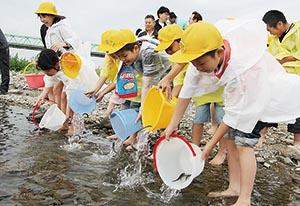 アユの稚魚を放流する児童ら