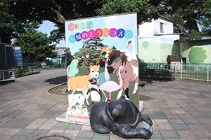 100周年を機に盛り上がりが期待される和歌山公園動物園