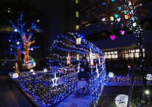 青色LEDを中心に癒やしの光が広がる中庭
