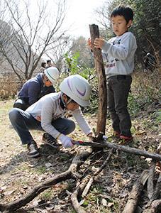 ノコギリで木を切る子どもたち