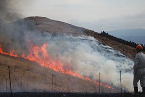 炎を上げる生石高原
