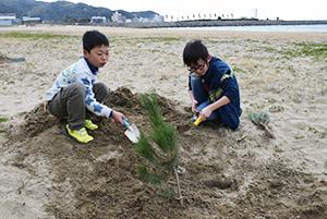 砂浜に苗木を植える児童ら