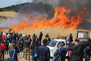 炎を上げるススキ草原