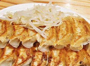野菜たっぷりの浜松餃子