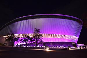紫色に照らされたビッグホエール