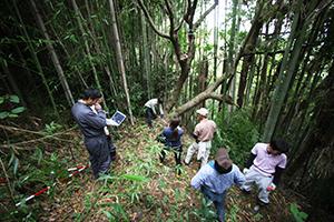 海草振興局林務課職員と「志賀野さみどり会」がハゼの原木を確認
