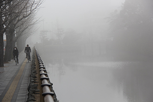 霧が立ち込め幻想的な和歌山城の堀と一の橋(午前8時30分ごろ)