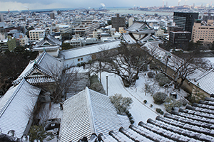 瓦に雪が積もり、一面銀世界となった和歌山城