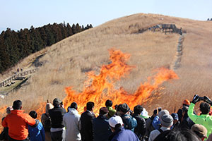 炎と煙が立ち上るススキの草原