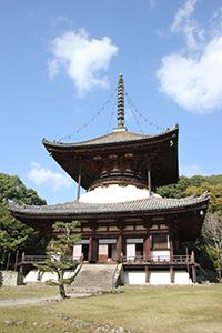 岩出の人気観光スポットの一つ、根来寺の国宝大塔