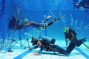 水中で障害物を潜り抜ける隊員ら