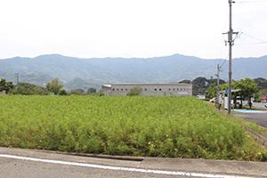 農産物直売所の建設が計画されている市有地