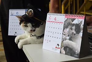 よんたま駅長と19年版カレンダー
