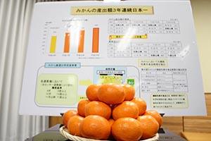 産出額3年連続日本一の県産ミカン