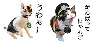 かわいいネコ駅長のスタンプ