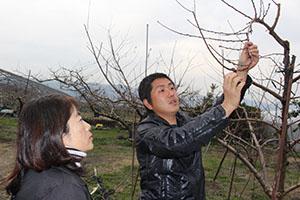 自身の桃畑で杉山さん㊧に台風21号の被害を説明する土橋さん