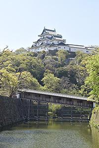 観光面でも市のシンボルとなる和歌山城