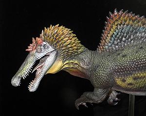 スピノサウルス類の生体復元模型