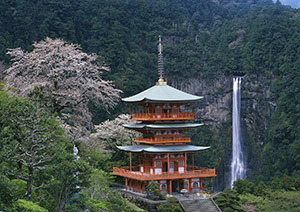 ご神体として信仰される「那智の滝」(県提供)