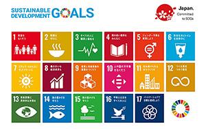 国際社会全体が目指す17の開発目標