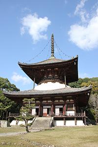 コースになっている根来寺の大塔