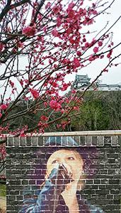 AR機能でHYDEさんと和歌山城、梅のコラボ撮影もできる(29日)