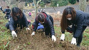 丁寧に苗木を植える参加者