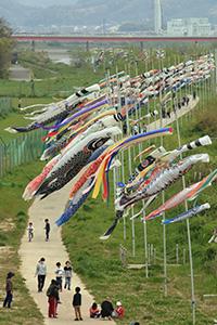約160匹のこいのぼりが風に泳ぐ(有田中央大橋から)