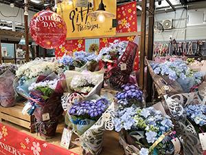色とりどりの花が並ぶ店内